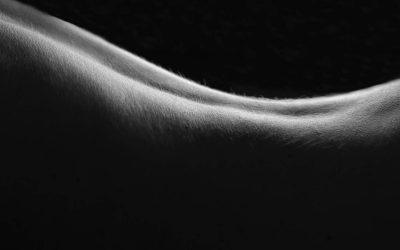 Tissue Viability – An Introduction